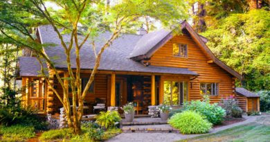 Essential Facilities Your Cabins Must Have For A Luxury Vacation